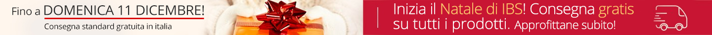 IMG Slide Stripe ConsegnaGratuitaNatale2016