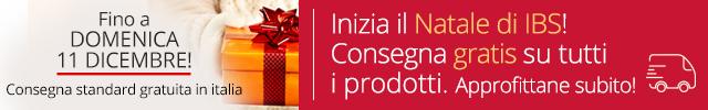 IMG Slide Stripe ConsegnaGratuitaNatale2016 Mobile