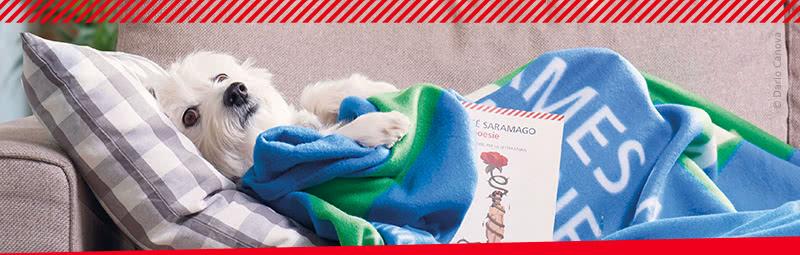 La coperta del lettore in regalo con due libri della for Regalo libri gratis