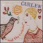 Meet the Curlews