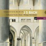 Cantate BWV39, BWV73, BWV93, BWV105, BWV107, BWV131 (Serie Veritas)