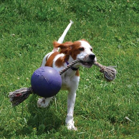 Jolly Pets Palla Romp-n-Roll Giocattolo per Cani 10 cm Blu - 2