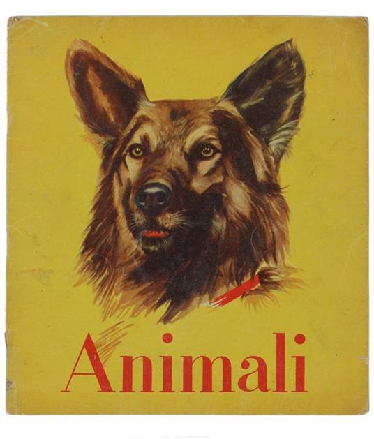 Animali. Illustrazioni Di Ferdinando Tolomelli E Carla Bassi - A. Cremonini Ongaro - copertina