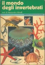Il mondo degli invertebrati