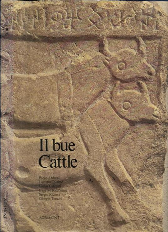 Il bue Cattle - copertina
