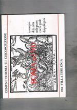 Roma nel '500, immagini della città nelle piante e nelle guide dei pellegrini. Catalogo della mostra fatta a Roma Villa Torlonia nel 1984
