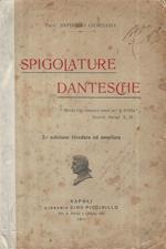 Spigolature Dantesche