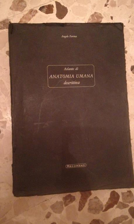 Atlante di anatomia umana descrittiva - Angelo Farina - copertina