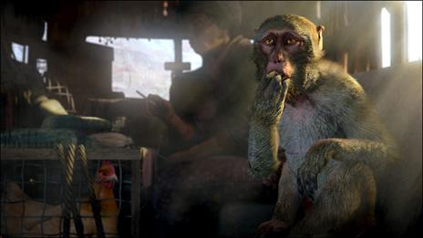 Far Cry 4 Limited Edition - XONE - 5