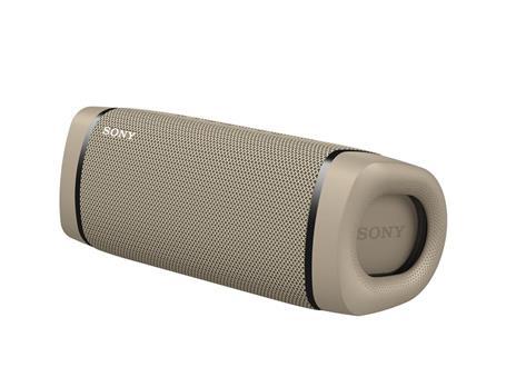 Sony SRS XB33 - Speaker bluetooth waterproof, cassa portatile con autonomia fino a 24 ore e effetti luminosi (Taupe)