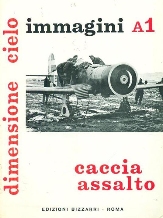 Dimensione cielo immagini A1 caccia assalto - copertina