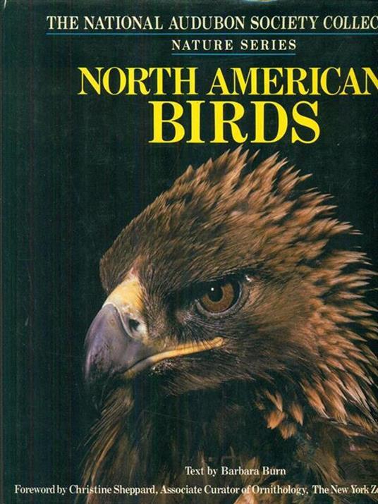 North american birds - copertina