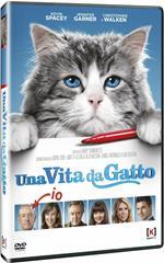 Una vita da gatto (DVD)