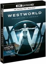 Westworld. Dove tutto è concesso. Stagione 1. Il Labirinto. Serie TV ita (3 Blu-ray + 3 Blu-ray Ultra HD 4K)