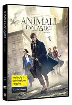 Animali fantastici e dove trovarli. Gift Pack (DVD)
