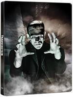Frankenstein. 90th Anniversary Steelbook (Blu-ray + Blu-ray Ultra HD 4K)
