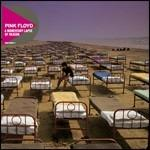 A Momentary Lapse of Reason (Discovery)