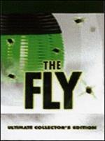 La stanza della mosca