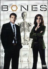 Bones. Stagione 1 (6 DVD) - DVD