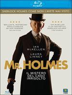 Mr. Holmes. Il mistero del caso irrisolto