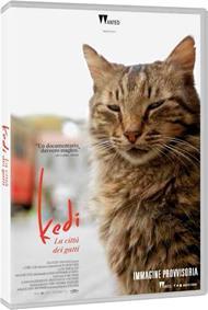Kedi. La città dei gatti (DVD)