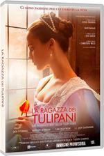 La ragazza dei tulipani (DVD)