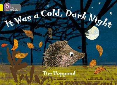 It Was a Cold Dark Night: Band 03/Yellow - Tim Hopgood - cover