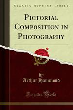 Pictorial Composition in Photography