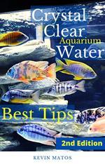 Crystal Clear Aquarium Water
