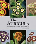 Auricula: History, Cultivation and Varieties