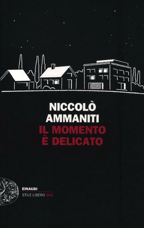 Il momento è delicato - Niccolò Ammaniti - copertina