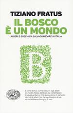 Il bosco è un mondo. Alberi e boschi da salvaguardare in Italia