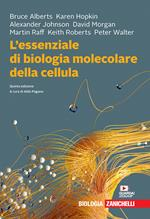L' essenziale di biologia molecolare della cellula. Con Contenuto digitale (fornito elettronicamente)