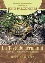 La Testudo hermanni. Varietà di Puglia