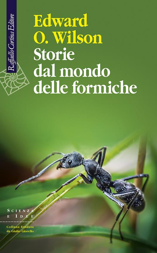 Storie dal mondo delle formiche - Edward O. Wilson - copertina