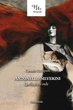 Antonello Silverini. Quello che si vede