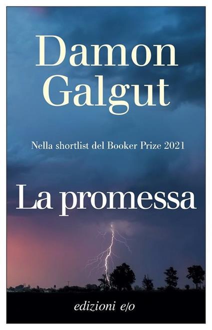 La promessa - Damon Galgut - copertina