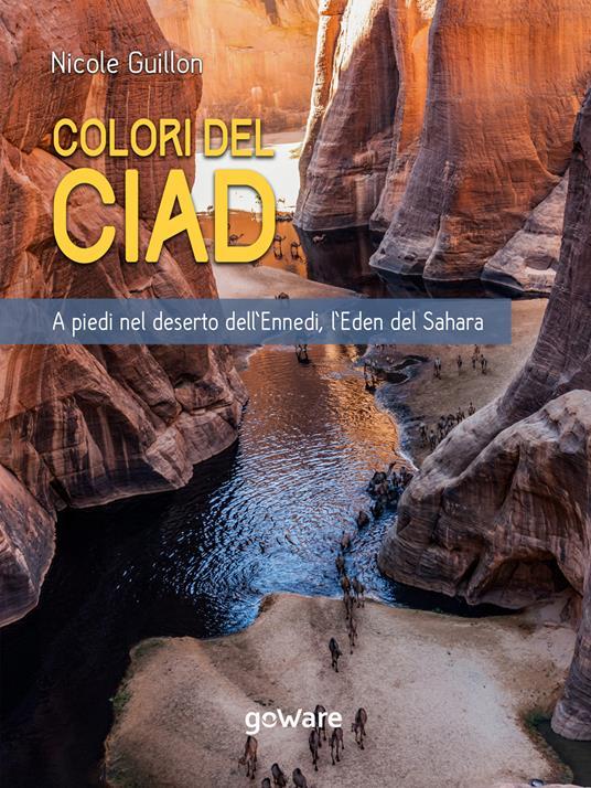 colori del Ciad. A piedi nel deserto dell'Ennedi, l'Eden del Sahara - Nicole Guillon - ebook