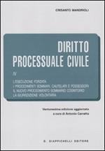 Diritto processuale civile. Vol. 4: L'esecuzione forzata-I procedimenti sommari, cautelari e possessori-Il nuovo procedimento sommario cognitorio-La giurisdizione volontaria.