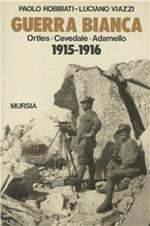 Guerra bianca. Ortles-Cevedale-Adamello (1915-1916)