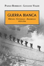 Guerra bianca. Ortles, Cevedale, Adamello 1915-1916