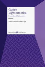 Capire la grammatica. Il contributo della linguistica
