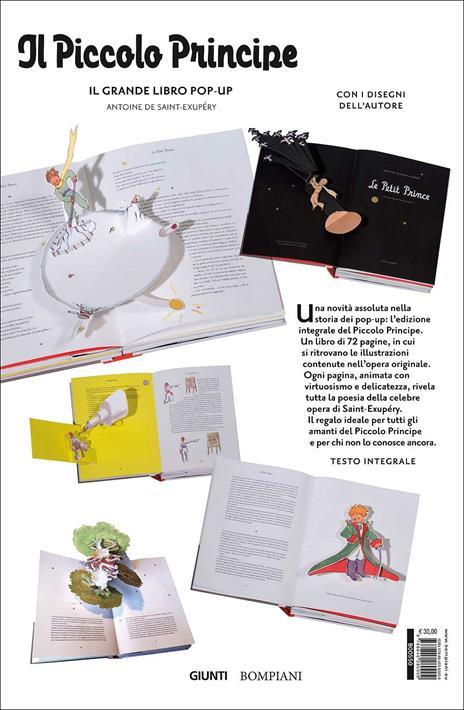 Il Piccolo Principe. Il grande libro pop-up. Ediz. integrale - Antoine de Saint-Exupéry - 7