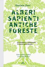Alberi sapienti antiche foreste. Come guardare, ascoltare e avere cura del bosco