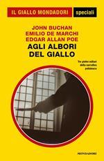 Agli albori del giallo: I trentanove scalini-Il cappello del prete-I delitti della rue Morgue