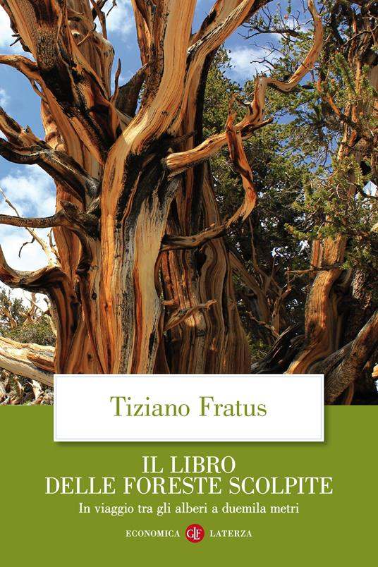 Il libro delle foreste scolpite. In viaggio tra gli alberi a duemila metri - Tiziano Fratus - ebook