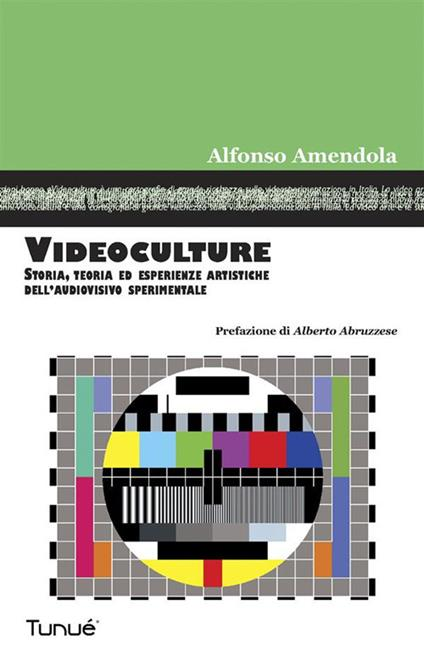 Videoculture. Storia, teorie ed esperienze artistiche dell'audiovisivo sperimentale - Alfonso Amendola - ebook
