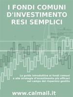 I fondi comuni d'investimento resi semplici. La guida introduttiva ai fondi comuni e alle strategie d'investimento più efficaci nel campo del risparmio gestito