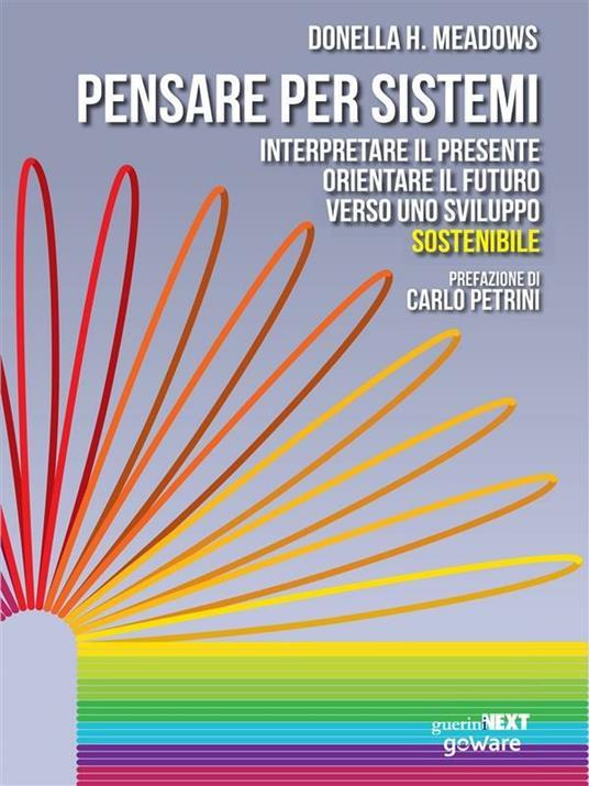 Pensare per sistemi. Interpretare il presente, orientare il futuro verso uno sviluppo sostenibile - Donella H. Meadows,Stefano Armenia - ebook