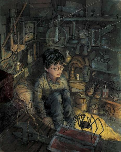 Harry Potter e la pietra filosofale. Ediz. illustrata. Vol. 1 - J. K. Rowling - 11